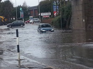 Meanwhile in Exeter... Photo credit: Kim Braund