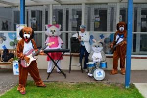 Animal band