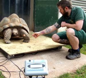Photo: Paignton Zoo
