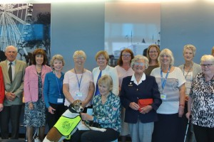 Some of the volunteers who attended the tea party with Mairead McAlinden (Chief Executive at South Devon Healthcare NHS Foundation Trust)