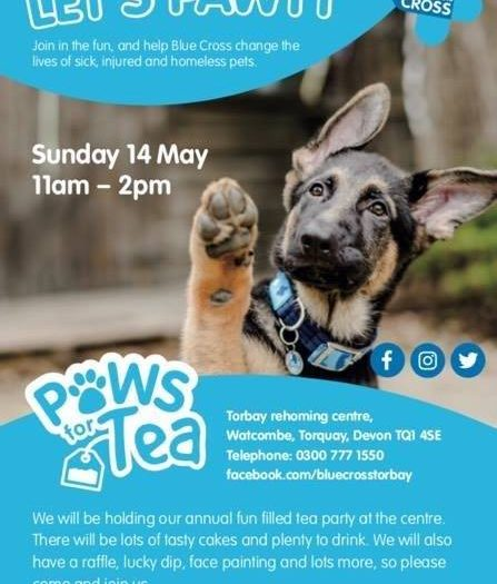 Blue cross annual paws for tea party this sunday we are for The coke brothers tea party