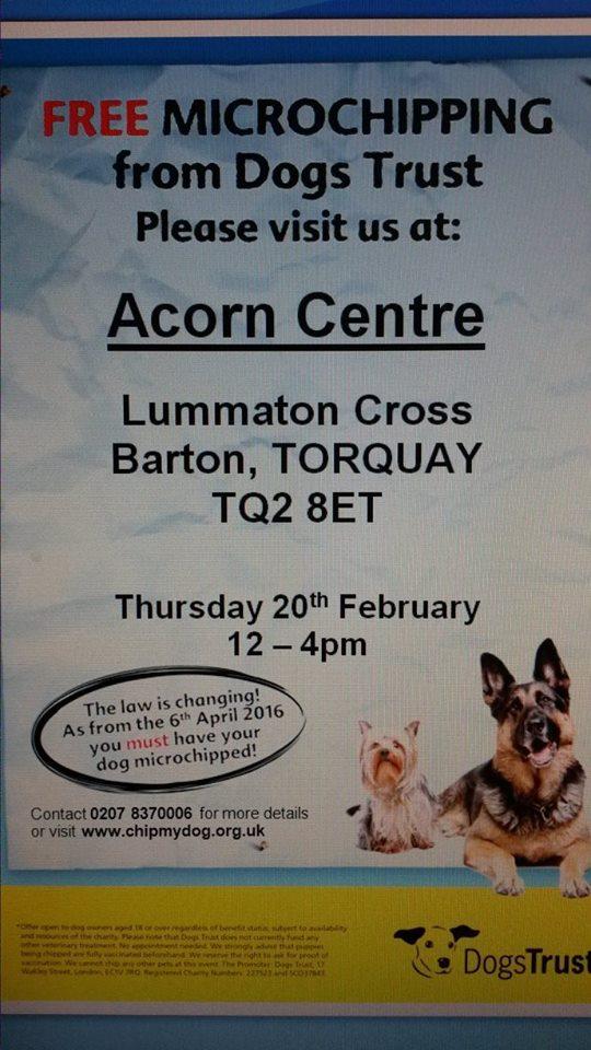Dogs trust Torquay