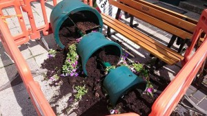 Vandals knocked over the planters
