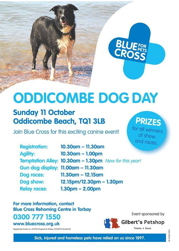 oddicombe dog day